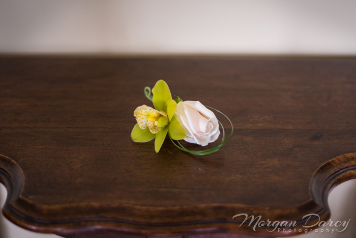 edmonton wedding photographer photography photographers rose orchid boutonniere