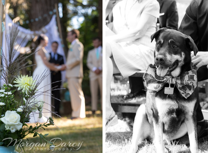 Vancouver wedding photographer photographers photography bowen island forest woodland chic ceremony dress bride groom flowers best dog